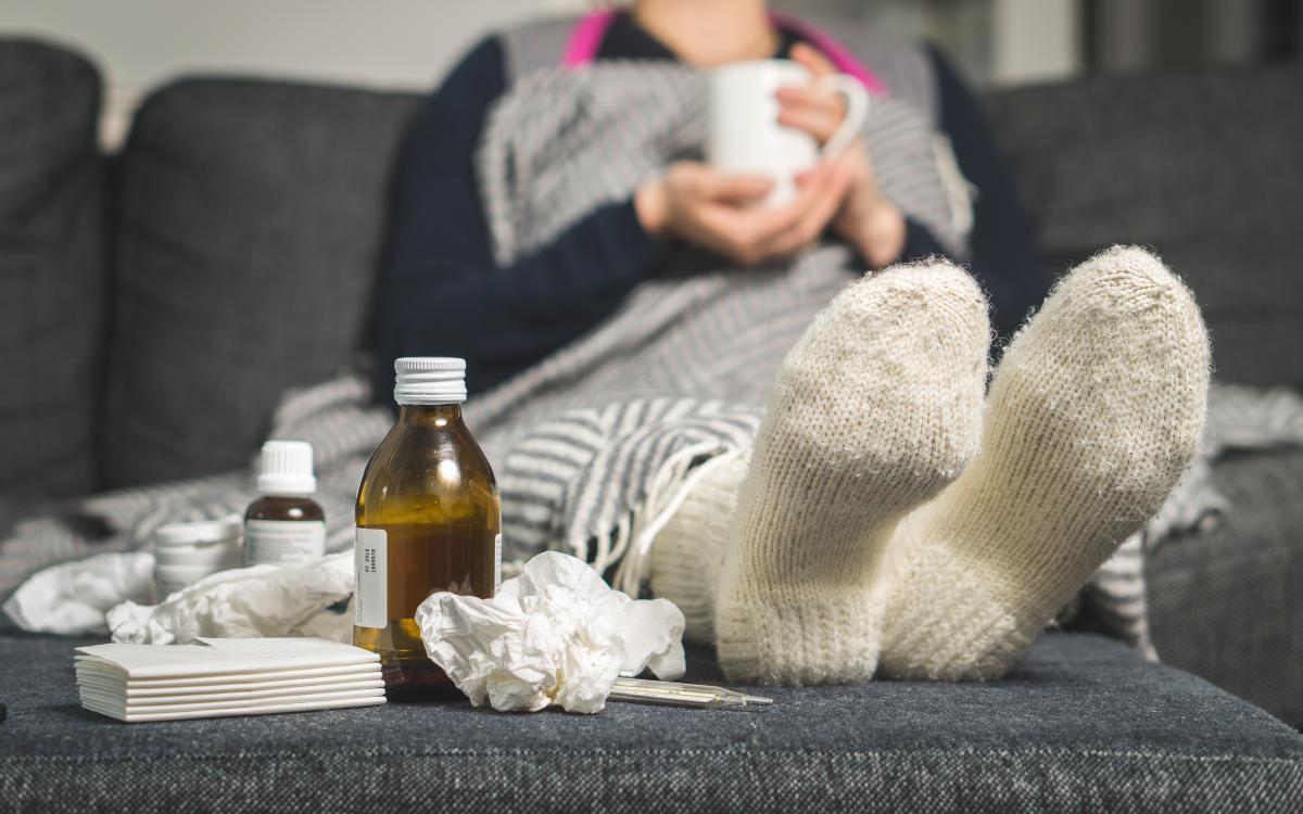 BARATAS - doenças que elas podem transmitir e os danos que podem causar-4